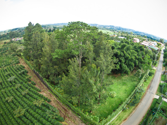 Aerial Property Photography of House in Grecia, Costa Rica