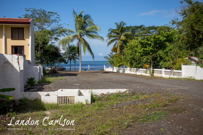 Jaco Oceanfront Property with Palm Tree